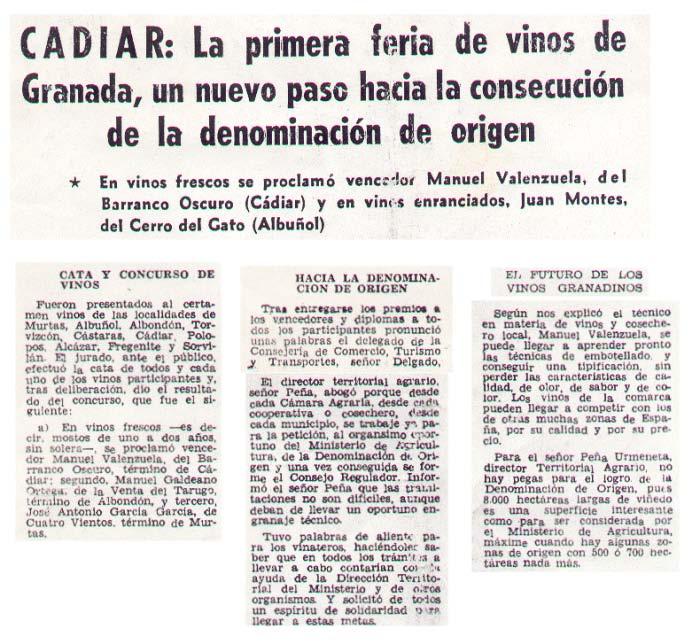 Cádiar: La primera feria de Vinos de Granada, un nuevo paso hacia la consecución de la Denominación de Origen | Ideal