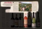 Vinos cultivados y criados sin química (Integral 183, 03/1995)