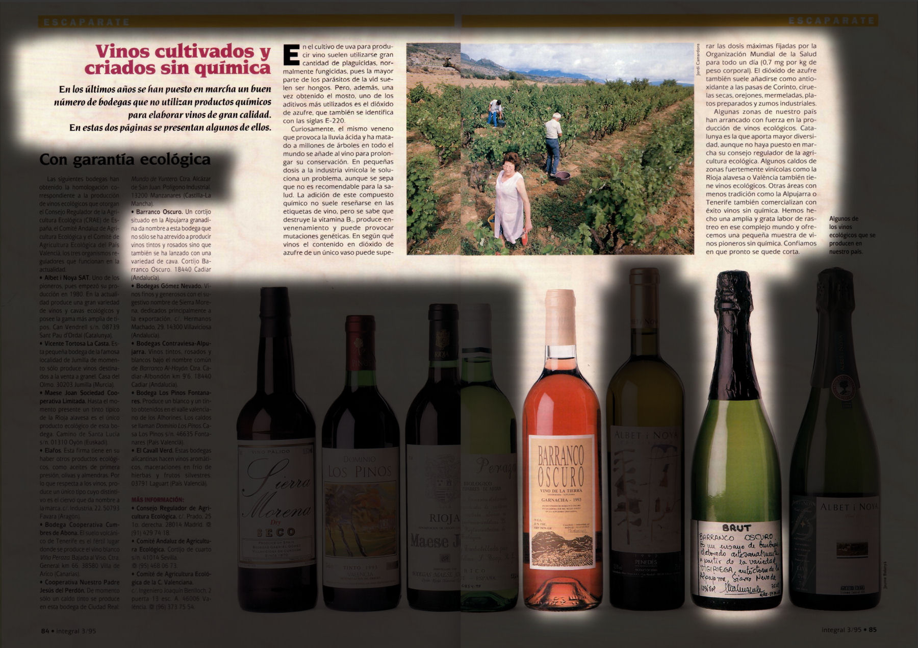 Vinos cultivados y criados sin química | Integral