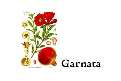 Garnata