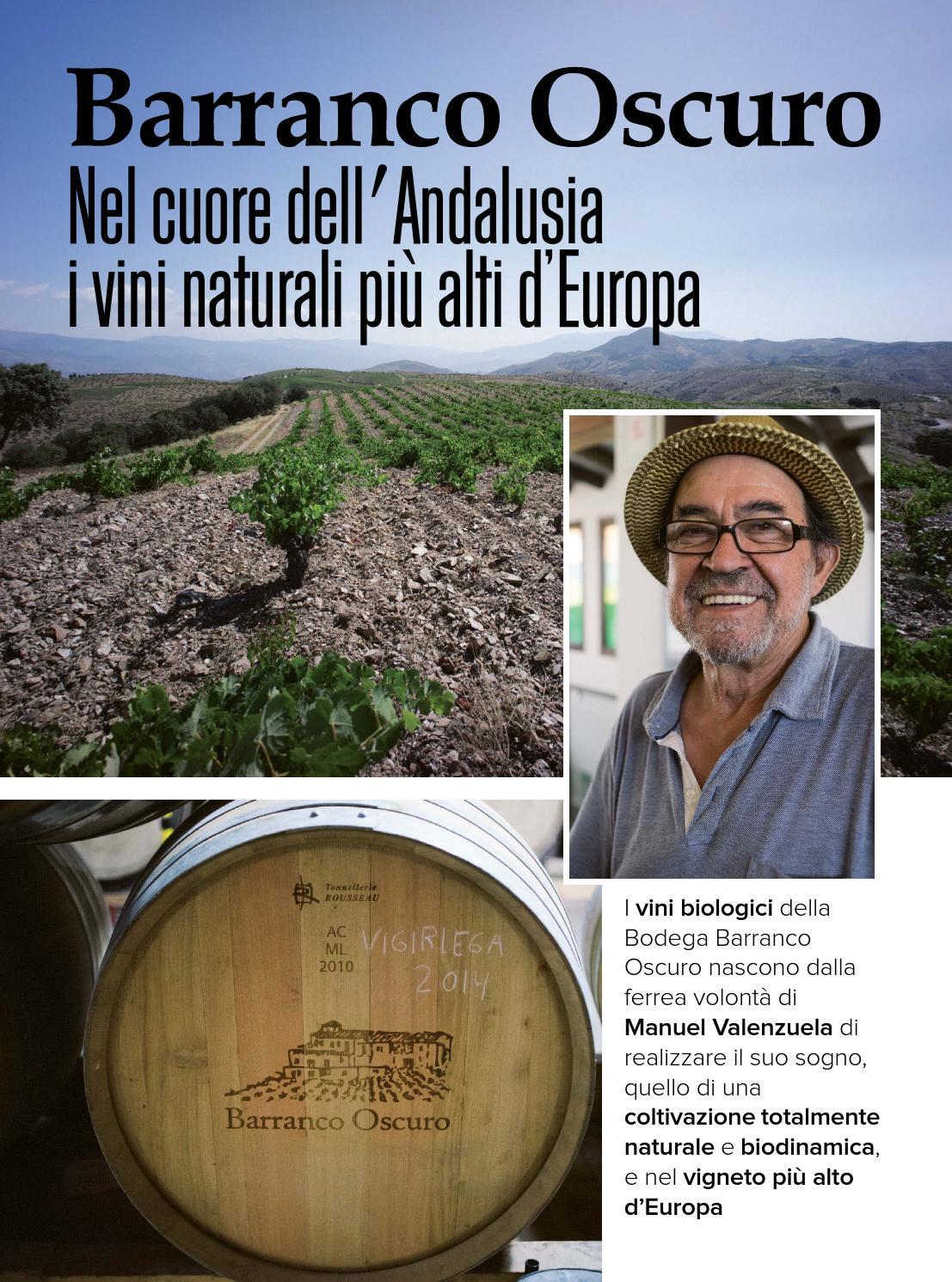 Barranco Oscuro, nel cuore dell'Andalusia I vini naturali più alti d'Europa | Italia a Tavola