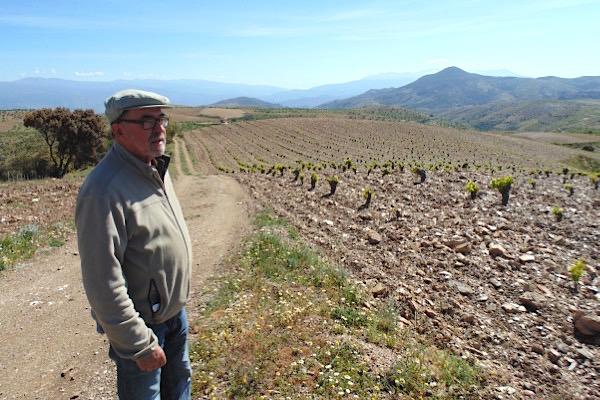 Manuel Valenzuela und seine Naturweine aus 1.368 Metern Höhe | Spaniens Weinwelten