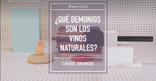 Vinos Naturales | El Comidista TV - Barranco Oscuro